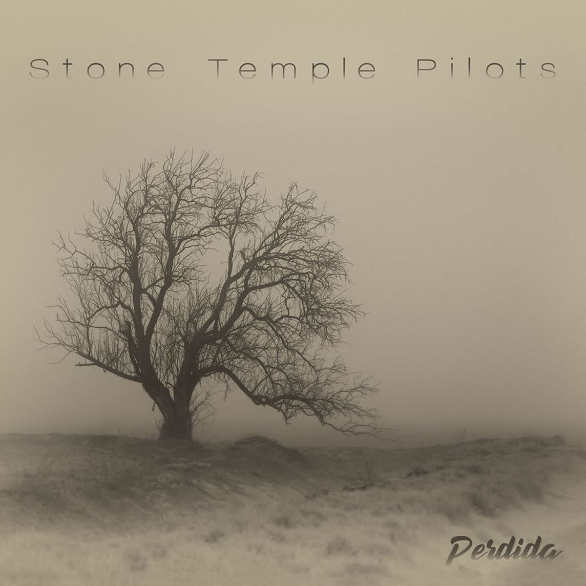 stone temple pilots - perdida - 2020